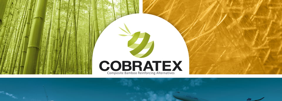a0-cobratex-ref-carminbook
