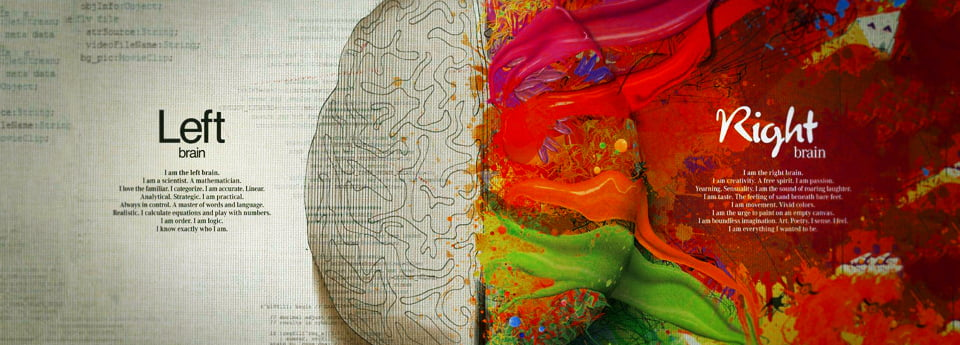 Cerveau-carminbook-news